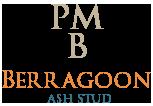 Berragoon ASH Stud