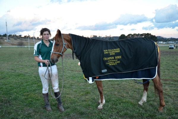 Champion-Horse-13